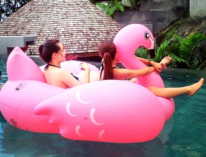 Preorder Flamingo เป่าล่ม