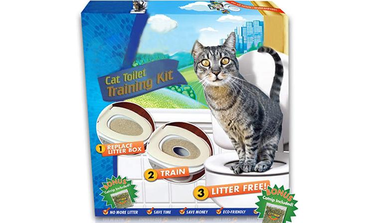 ฝึกขับถ่ายแมวบนชักโครก