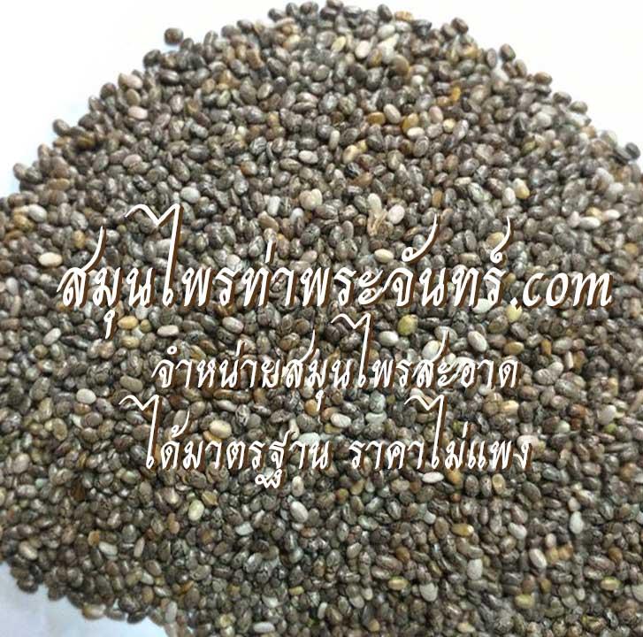 เจีย / เชีย / เม็ดเชีย / เม็ดเจีย / เมล็ดเจีย / เมล็ดเชีย(เมล็ด) Chia Seeds