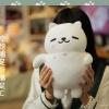 "Preorder แมว ""Neko Atsume"
