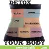 ดีทอกซ์ ด้วยโปรแกรม Herbalife สำหรับการลดน้ำหนัก