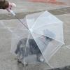 ร่มกันฝน สำหรับสุนัขและแมว พร้อมสายจูง