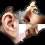 การดูแลสุขภาพของหู คอ จมูก ที่มีผลต่อดวงตาของคุณ