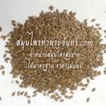 สมุนไพรเมล็ดแฟลกซ์ / แฟล็กซีด / แฟลกซีด / แฟลกซ์ซีด / เมล็ดแฟล็ก / แฟล็กซ์ซีด / flax seed / flaxseed