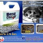Best Choice Drain Opener น้ำยาล้างสิ่งอุดตัน หัวเชื้อน้ำยาขจัดสิ่งอุดตันในระบบท่อน้ำทิ้ง น้ำยากำจัดสิ่งอุดตันในระบบท่อน้ำ เป็นสารละลายเข้มข้นสูง