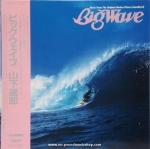 Tatsuro Yamashita - Big Wave