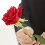 การอบแห้งดอกกุหลาบ