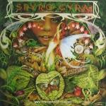 Spyro Gyra - Morning Dance
