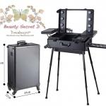 กระเป๋ารถเข็น โต๊ะเครื่องแป้ง กล่องเก็บเครื่องสำอาง Professional major beauty case boxes stand - Black