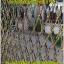 จำหน่ายตาข่าย สำหรับไดร์ฟกอล์ฟ thumbnail 4