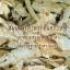 สมุนไพรกวาวเครือขาว Pueraria Mirifica thumbnail 3