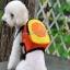 กระเป๋าเป้สุนัข กระเป๋าเป้แมว ลายส้ม thumbnail 1