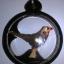 นกสาริกา ใม้กาฝากมงคล หลวงพ่อประเสร็ฐ วัดวิหารแดง thumbnail 2