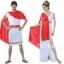 เช่าชุดนักรบกรีก ชุดนักรบโรมัน ชุดเจ้าหญิง ชุดตัวการ์ตูน ชุดฮีโร่ ชุดซุปเปอร์ฮีโร่ ชุดเจ้าชาย ชุดแฟนซี ให้เช่าราคาถูก 094-920-9400 , 094-920-9402 thumbnail 1