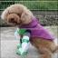เสื้อผ้าสุนัข แมว thumbnail 2