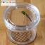 Eye Spy Magnifying Bug Insect Viewer ที่ส่องขยายแมลง กล่องดูแมลงจิ๋ว thumbnail 6
