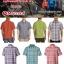 Marmot Ligthweight & Quik dry Shirts ( เบาสบาย แห้งไว ) thumbnail 1