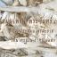 สมุนไพรกวาวเครือขาว Pueraria Mirifica thumbnail 2