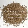 เมล็ดแฟลกซ์แห้ง / แฟล็กซีด / แฟลกซีด / แฟลกซ์ซีด / เมล็ดแฟล็ก / แฟล็กซ์ซีด / flax seed / flaxseed