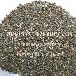 สมุนไพรเจีย / เชีย / เม็ดเชีย / เม็ดเจีย / เมล็ดเจีย / เมล็ดเชีย(เมล็ด) Chia Seeds